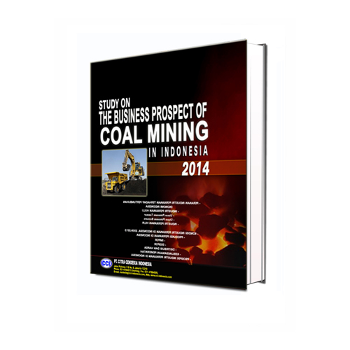 Indonesia Industry Coal Mining Development