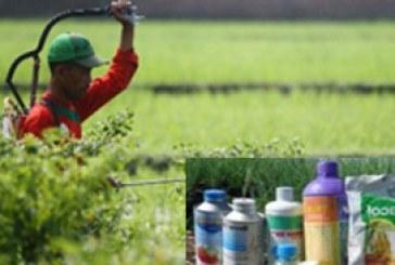 Pestisida – Kebijakan Pemerintah Dibidang Investasi