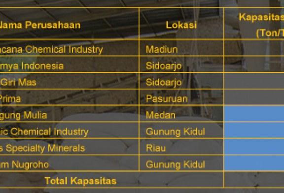 Produsen Bahan Kimia Industri Kertas (Kalsium Karbonat)