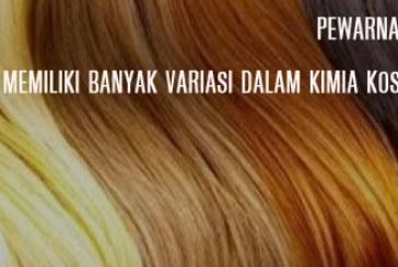 Surat Edaran Bahan Pewarna Rambut