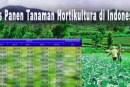 Luas Panen Tanaman Hortikultura