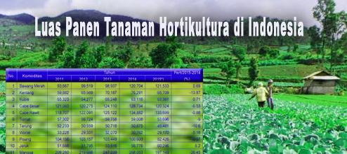 Luas Lahan Hortikultura Indonesia