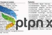 Profil PT Perkebunan Nusantara XI, (Persero)
