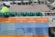Perkembangan Pasar Gipsum di Indonesia