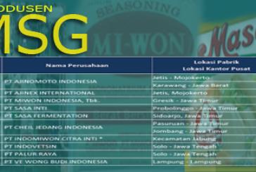 Produsen dan Kapasitas Produksi MSG di Indonesia